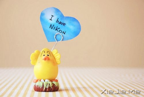 英文心语:我爱你,爱了整整一个曾经 (7)